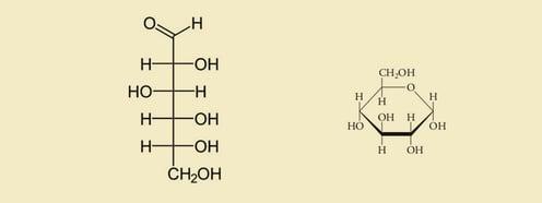 Química-orgánica