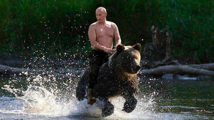 noticia-facebook-vladimir-putin-oso1