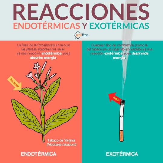 reacciones-endotermicas-y-exotermicas_CENEVAL_EXANI_II.png