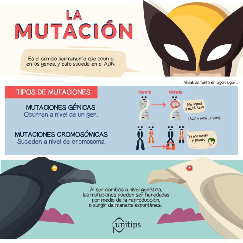 Blog-mutacion.png