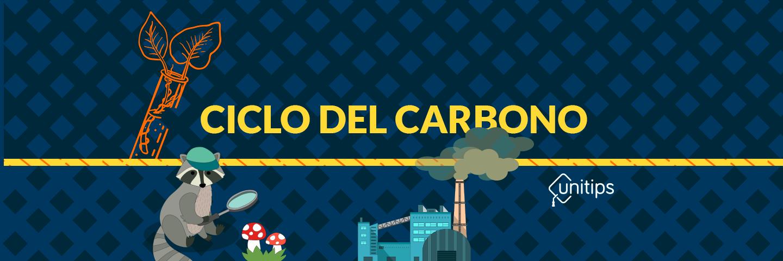 Ciclo del Carbono | Tema de examen UAM