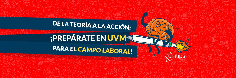 De la teoría a la acción: ¡prepárate en UVM para el campo laboral!