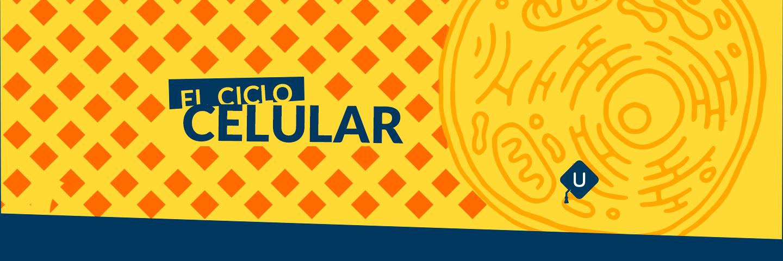 Biología: Ciclo celular. Guía de temas para el examen de la UNAM.