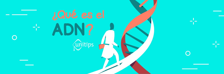 ¿Qué es el ADN?
